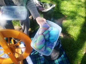 Easter color batts