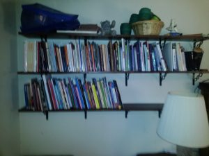 Ginger's new shelving, partly filled